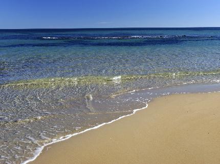 Riviera-beach-pilar-de-la-horadada_191120091611127723