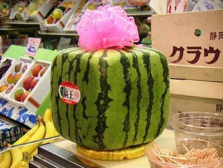 Melon-square_watermelon